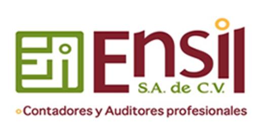 Ensil Contadores y auditores profesionales